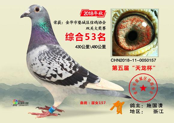 """金华市""""天龙杯""""2018年秋51-70名欣赏"""