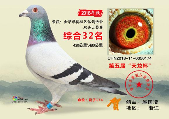 """金华市""""天龙杯""""2018年秋31-50名欣赏"""