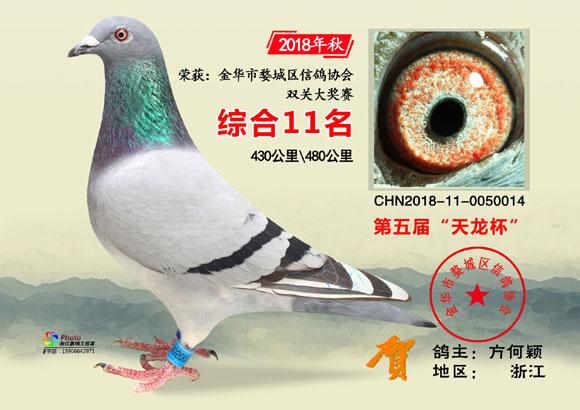 """金华市""""天龙杯""""2018年秋11-30名欣赏"""